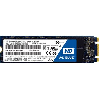 1000GB WD Blue M.2 M.2 6Gb/s TLC Toggle (WDS100T1B0B)